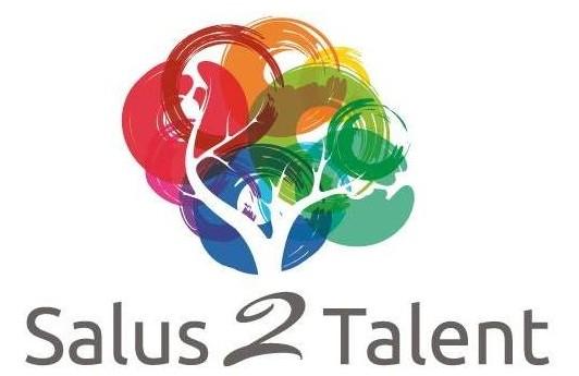 logo s2t_alleennaam